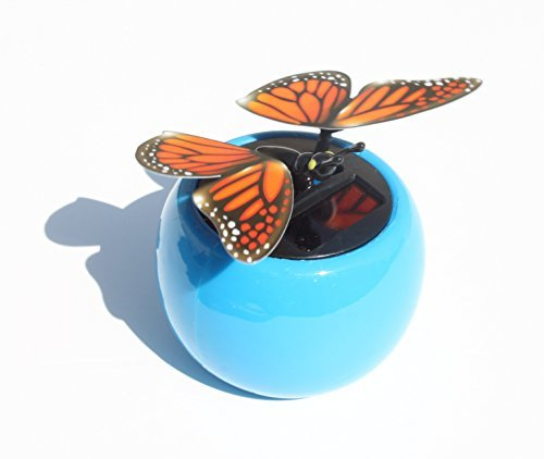 A Flip Flap Wings Dancing Butterfly Flying in a Blue Pot - Bobble Plant Solar Toy