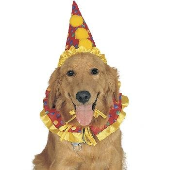 Clown Pet Costume, One Size fits Most