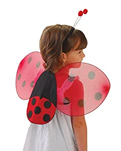 Lady Bug Wings & Antenna Costume Set