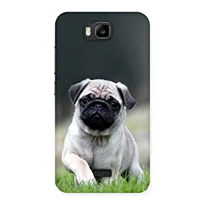 Pug Dog Grass Multicolor Back Case Cover for Honor Bee