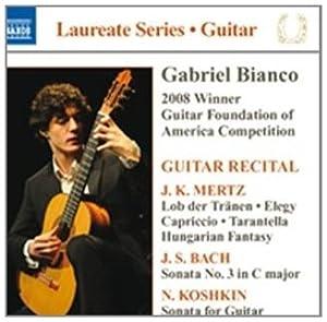 Laureate Guitar Series: Gabrie