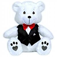Precious Moments Plush Teddy Bear