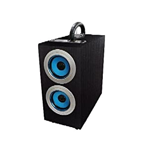 Axess SP1003-BL Music Box Speaker with Subwoofer Includes FM Stereo, SD/USB/Line-In Inputs, Remote Control from Axess