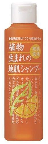 石澤 オレンジシャンプー 250ml