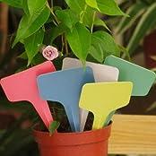 100pcs 6x3CM Gardening Plastic Plant Flower T-type Tags Marker Labels -