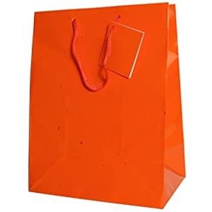 Orange Large (10 x 13 x 5) Glossy Gift Bag - Bags sold individually