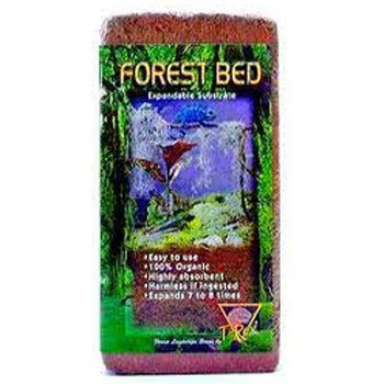 T-Rex Forest Bed