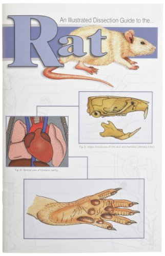 Frey Scientific 580798 Mini-Guide to Rat Dissection