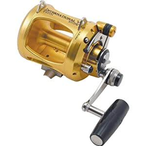 Penn International V-Series 2-Speed Fishing Reel 58Oz 6048