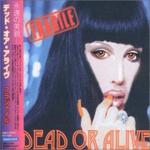 Dead Or Alive - Fragile - Zortam Music