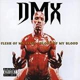 Get It On The Floor (w/ Swi... - DMX