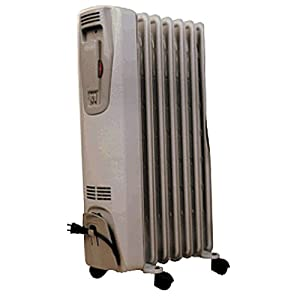 DELONGHI 2507 Portable Radiator and Heater
