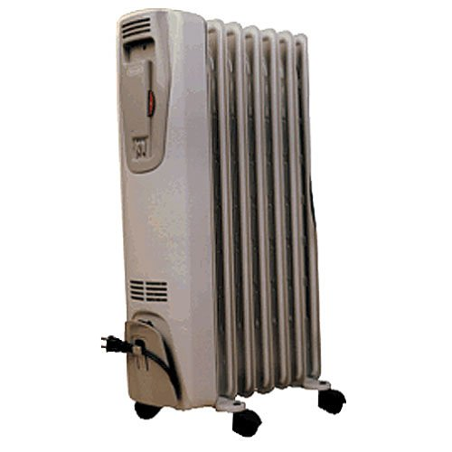 Amazon.com - DELONGHI 2507 Portable Radiator and Heater - Portable