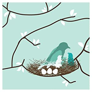 "Imagination - Bird Nest Stretched Wall Art Size: 18"" x 18"", Color: Sea Green"