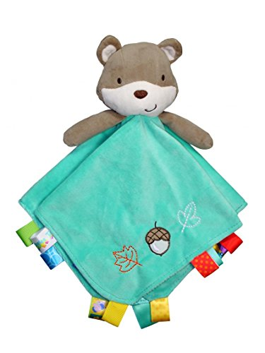 Taggies Rattle Head Fox And Friends Baby Boy Plush Security Blanket Lovie front-639231