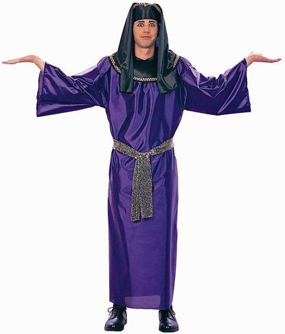 Adult Purple Egyptian Pharaoh Costume (Size: Standard 42-46)