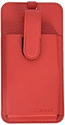 iPhone SE Bag Tag Pouch, iPhone 5s, iPhone 5, and iPhone 4, Colorant Bag Tag Pounch (Red)