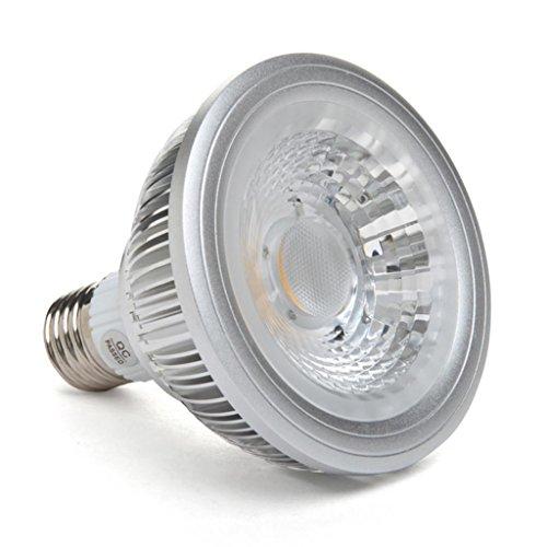 Golden Sun Ul Listed Dimmable 10 Watt Par30 Led Cob Spot Light Bulb,38 Degree, 85 Watt Equivalent, 950 Lumen, E27 Medium Base, 2700K Warm White