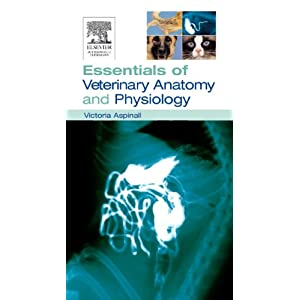 Essentials of Veterinary Anatomy & Physiology [Paperback]