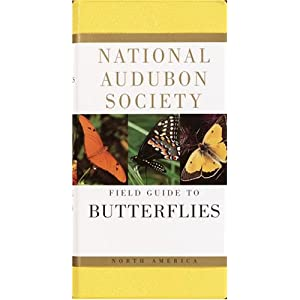 National Audobon Society Field Guide to North American Butterflies