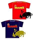 【7月中旬入荷お届け予定商品】 GRANDE EURO2008★スペイン代表★優勝記念Tシャツ(ホーム・Mサイズ)