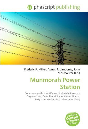 munmorah-power-station-commonwealth-scientific-and-industrial-research-organisation-delta-electricit