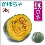 【かぼちゃ2~3個】無農薬栽培かぼちゃ2~3個(3kg)【送料込】