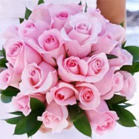 Amazon.com - Discount Bridal Bouquet Light Pink Roses