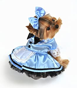 Anit Accessories Fantasy Alice Dog Costume, X-Small, 8-Inch