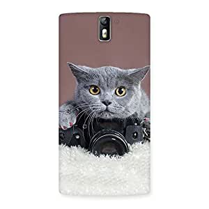 Stylish Kitty Photographer Multicolor Back Case Cover for One Plus One