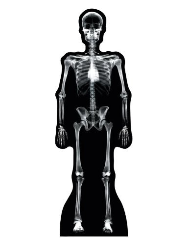 X-Ray Skeleton - Advanced Graphics Life Size Cardboard