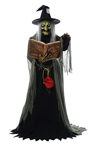 Spell Speaking Witch Animated Prop Halloween Haunted House MR124250