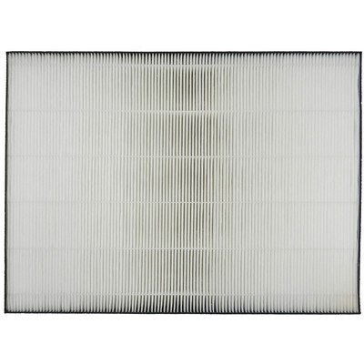Hepa Filter For Car front-45821