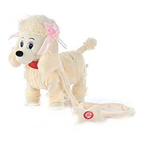 Electronic Dog Toy With Leash