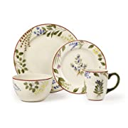 Pfaltzgraff Studio 16-Piece Dinnerware Set, Herbal Garden