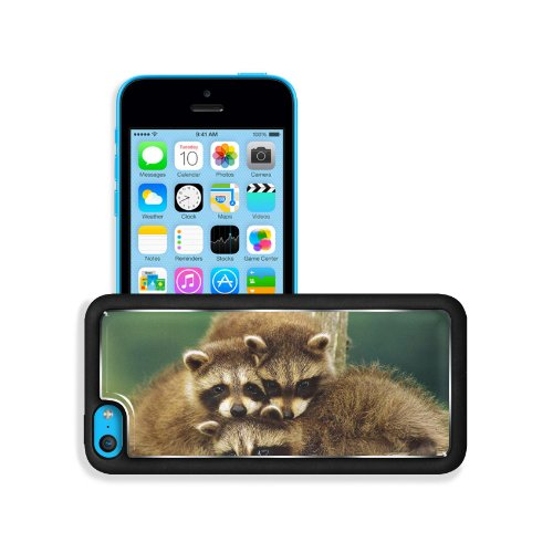 Raccoon Three Sit Beautiful Baby Apple Iphone 5C Snap Cover Premium Aluminium Design Back Plate Case Customized Made To Order Support Ready 5 Inch (126Mm) X 2 3/8 Inch (61Mm) X 3/8 Inch (10Mm) Liil Iphone_5C Professional Metal Case Touch Accessories Graph front-735281