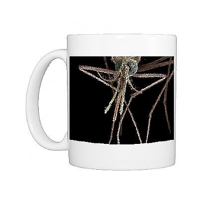 Photo Mug Of Lrds-83 Mosquito, Female From Ardea Wildlife Pets