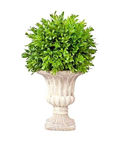 Creative Displays Tea Leaf Urn, Green