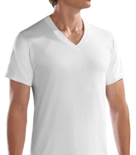 Fruit of the Loom Men's 5pk White V-Neck T-Shirt