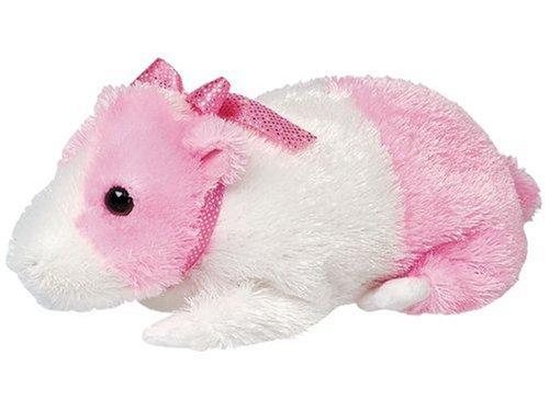 Guinea Pig Toys For Kids