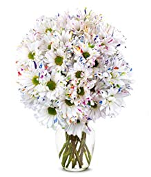 From You Flowers - Funfetti Daisy Flowers - 12 Stems (Free Vase Included)
