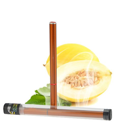Luxus E Shisha 500 Zug Honigmelone Profi Wasser Pfeife Multi LED E-Hookah to go 2 go