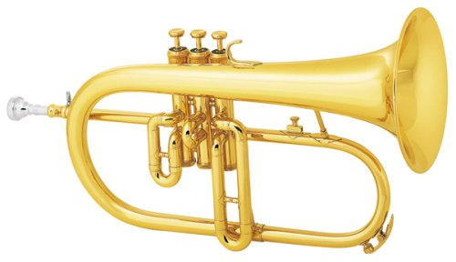HW Brass-SaverTM Flugelhorn Set