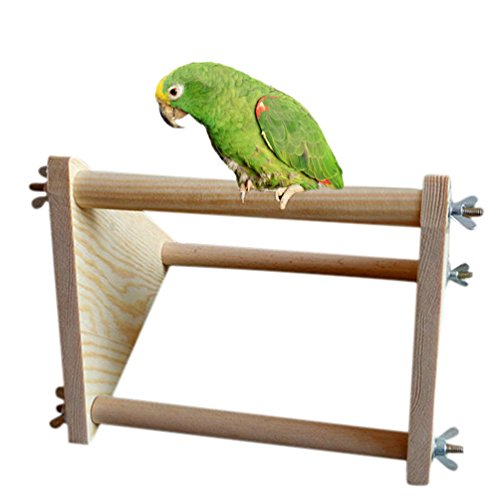 Wooden Perch For Bird Parrot Macaw African Greys Budgies Parakeet Cockatiel Cockatoo Conure Lovebird Table Training Perch Stand Toy