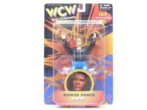 WCW Power Punch Raven distributed by Toymakers 1998