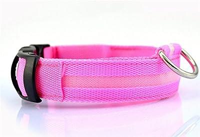 Jackie 1 Pc Nylon LED Dog Night Safety Collar Flashing Light up Circular Pendant Collar -Large