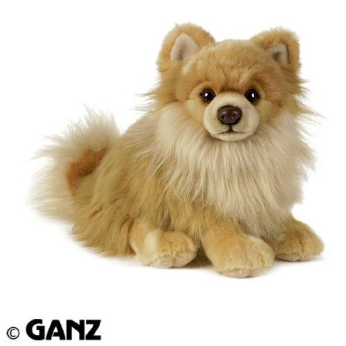 Webkinz Signature Pomeranian with Trading Cards