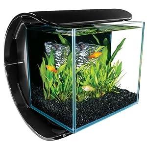 Marineland silhouette square glass aquarium for 10 gallon fish bowl