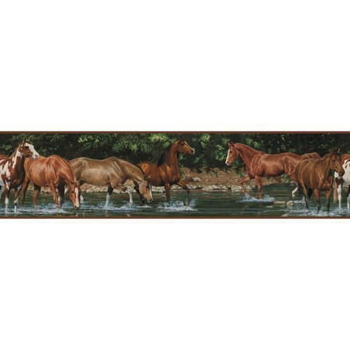 York Wallcoverings RMK1016BCS RoomMates Wild Horses Peel & Stick Border, - 1