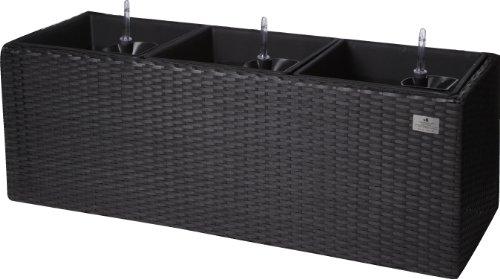 blument pfe suntshop. Black Bedroom Furniture Sets. Home Design Ideas